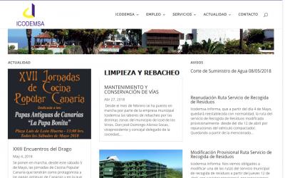 Presentación web Icodemsa